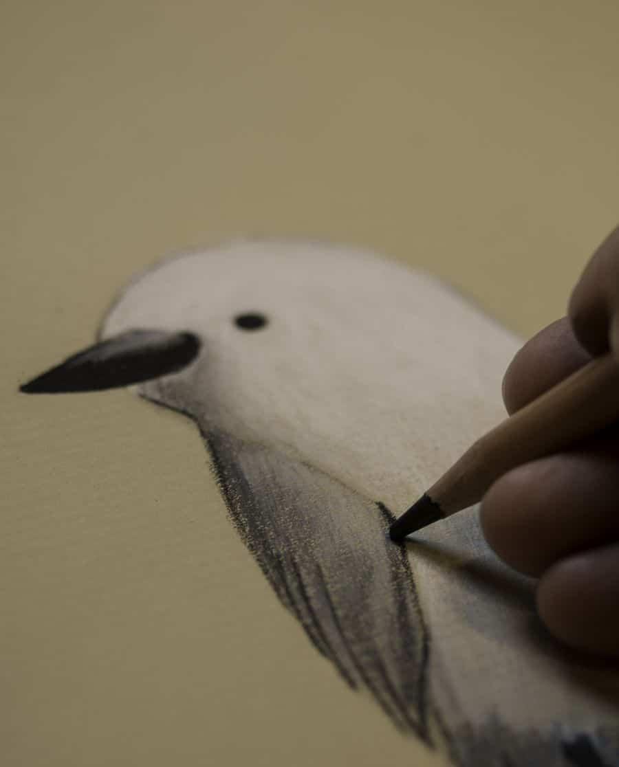Desenho à Distância - Inspiração